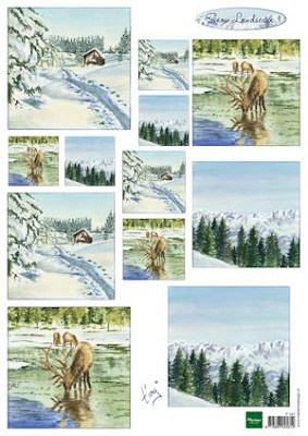 knipvel Tiny`s winter landscapes