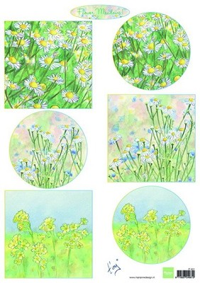 knipvel Tiny`s flower meadow 1