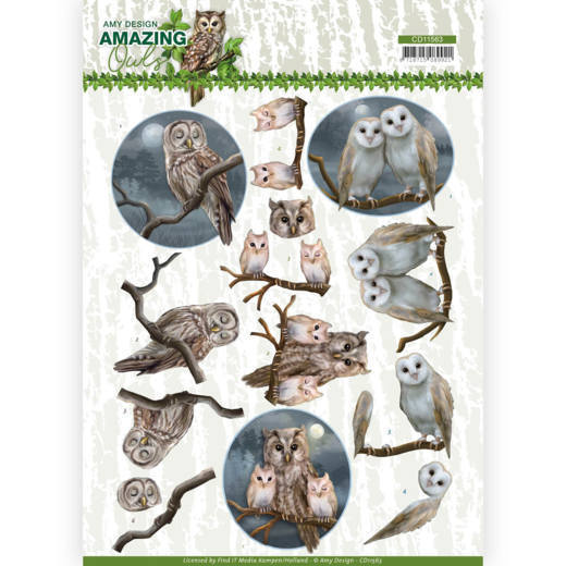 3D Cutting Sheet - Amy Design - Amazing Owls - Night Owls