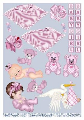 stappenvel A4 baby girl Barto Design