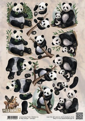 3D Knipvel - Amy Design - Wild Animals - Pandas